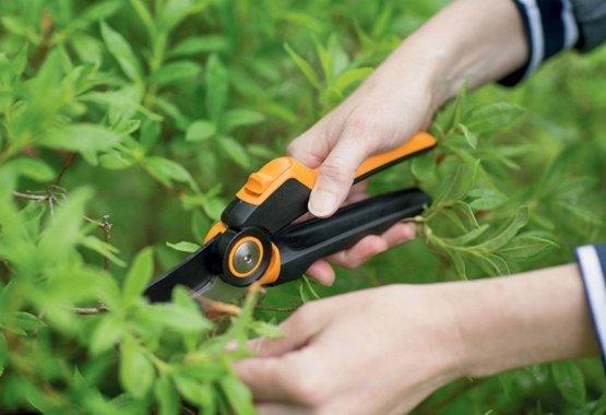 Probuďte svou zahradu s těmi nejlepšími nástroji