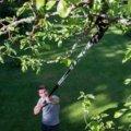 Nůžky zahradní univerzální teleskopické UP86