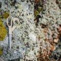 Recyklované nůžky Fiskars (21 cm)